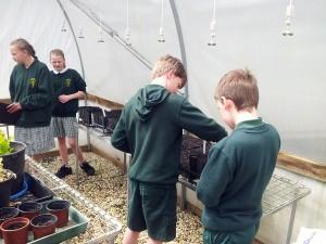 gardening-sustainability-003